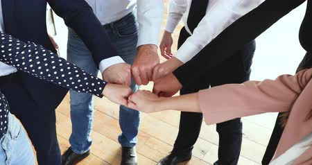 щит : Reliable responsible diverse business team people group join fists together in circle close up view building strong powerful team helping in teamwork express strength engaged in partnership concept