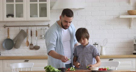 milující : Caring young father teaching little school boy son chopping fresh vegetables on wooden cutting board in modern kitchen. Focused small kid learning cooking healthy food together with daddy at home. Dostupné videozáznamy