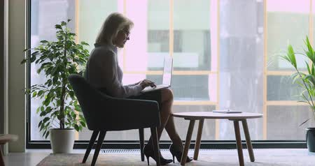 общаться : Full length side view concentrated confident older businesswoman sitting on comfortable armchair near big window, working on laptop. Focused motivated mature female boss typing email to clients. Стоковые видеозаписи