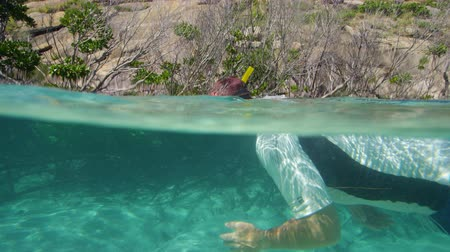 A shot of a snorkeler underwater checking the mangroves growing around the sea.