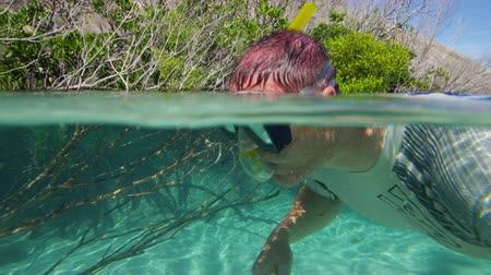 A medium shot underwater of a man that is observing the mangroves roots that is rooted underewater.