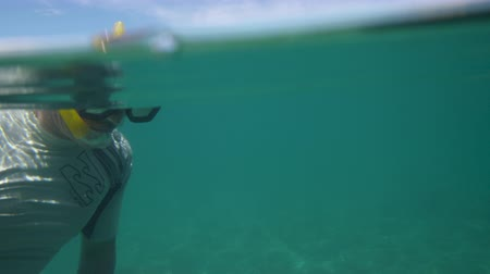 A close up shot of a snorkeler finding something beneath the sea.