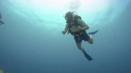 A shot of a scuba diver going deeper in the blue vast sea. Dostupné videozáznamy
