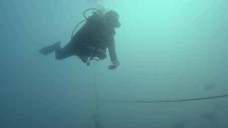 A shot of a scuba diver that is getting deeper is attached to a rope.