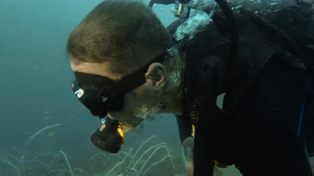 A tracking underwater shot of a man exploring the sunken ship that is covered with sea plants.