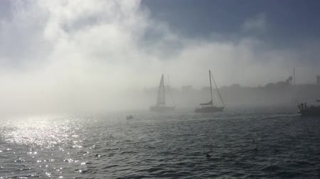 istanboel : Zeilboot in de mist in Marina del Rey Los Angeles HD