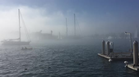 isztambul : Sailboat sailing in the fog in Marina del Rey Los Angeles HD