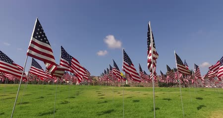 usa independence day : Set of American flags fluttering in the wind on the Memorial Day. Los Angeles, California, USA