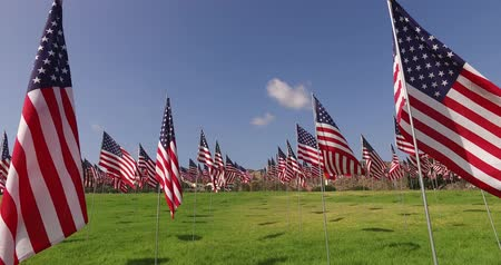 четверть : Set of American flags fluttering in the wind on the Memorial Day. Los Angeles, California, USA