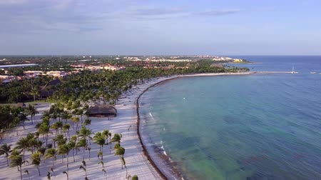 Канкун : Aerial drone shot. The camera slowly rises upwards to reveal a splendid view of the coast of the Caribbean Sea. Beautiful shade of coconut palms during sunset. Riviera Maya, Quintana Roo, Mexico