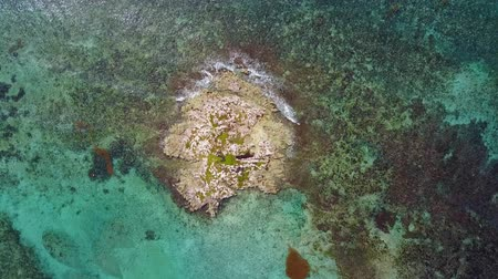 atol : Aerial drone shot. A view of the coral island from a birds eye view. The camera looks down. Turquoise water of the Caribbean Sea. Cancun Mexico.