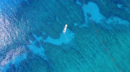 Aerial drone shot. View from above of the boat with divers in the distance from a birds eye view. Turquoise water view coral coast of the Caribbean Sea. Riviera Maya Mexico. Wideo