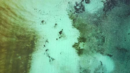 atol : Aerial drone shot. A view of the coral island from a birds eye view. The camera looks down and flies forward slowly. Turquoise water of the Caribbean Sea. Riviera Maya Mexico.