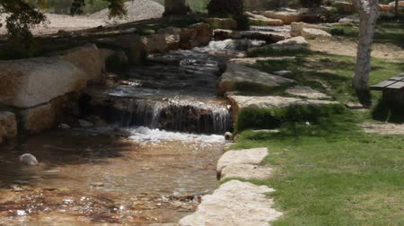 poça de água : Small stream. Creek. Artificially created an oasis in the Negev Desert, Israel Stock Footage
