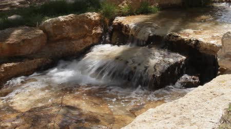 deserto : Small stream. Creek. Artificially created an oasis in the Negev Desert, Israel Vídeos