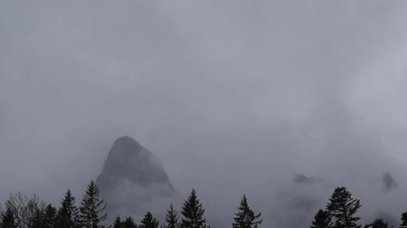 ponta : foggy mountain tip tops peaks with tree silhouette Stock Footage