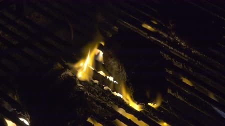 kamp ateşi : Steaks Grilled at Night in Slow Motion