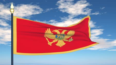 Черногория : Flag Of Montenegro on the background of the sky and flying clouds. Стоковые видеозаписи