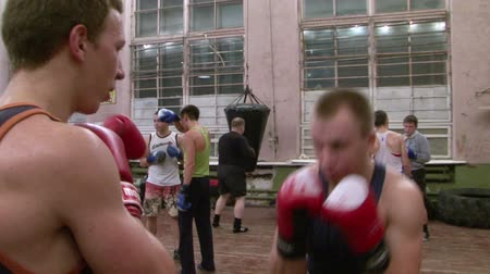 bokshandschoenen : Boxers in opleiding Stockvideo