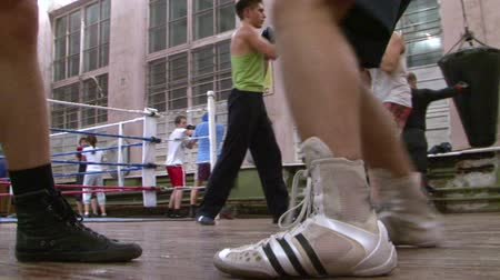 boxe : Boxers in training