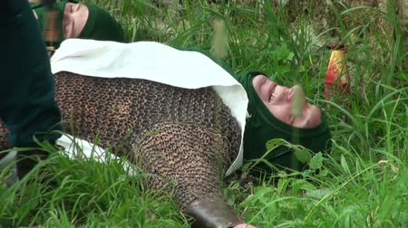malienkolder : Warrior in chainmail liggen op het gras Stockvideo