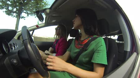 inside cars : The girl driving the car