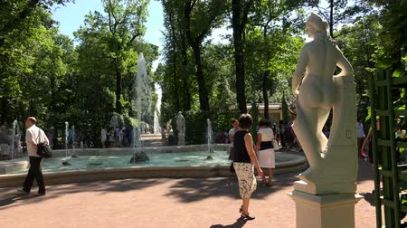 saintpetersburg : Summer garden. Saint-Petersburg. Shot in 4K ultra-high definition UHD, so you can easily crop, rotate and zoom, without losing quality!  Real time. Stock Footage