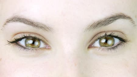 olhos verdes : beautiful green eyes