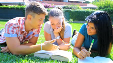 três pessoas : Three students having good time in college