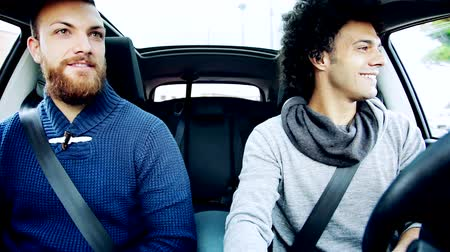 legal : Happy male friend driving going in vacation