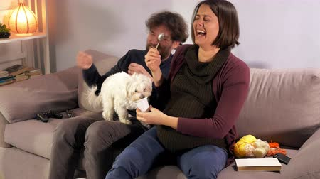 волнение : Pregnant couple having fun with puppy at home