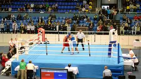 mortal : Junior World Boxing Championships 2013 on September 08, 2013 in Kiev, Ukraine. Commands during preliminaries boxing competition