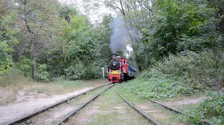 multa : retro locomotive in the forest, vintage train