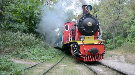 lokomotif : vintage locomotive in the forest, retro train