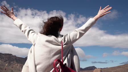 hanedan arması : tourist girl looking at the mountains on Tenerife island