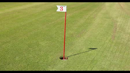 aro : Golf ball goes into the hole number 3. UltraHD