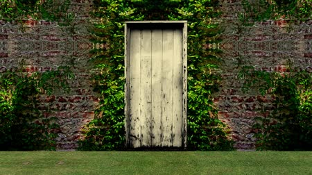 entrance : Garden Door Open to a Blue Screen Background Stock Footage