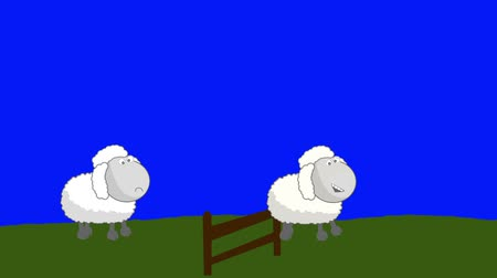 koyun : Counting Sheep that Jumping Above a Wooden Fence on a Blue Screen Background