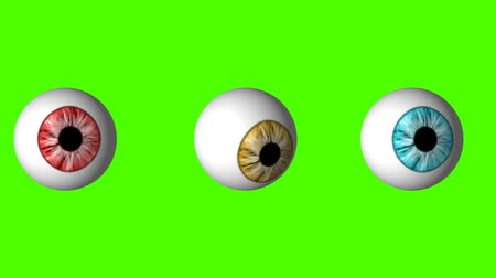 eye ball : Funny Set of Eyeballs looking around on a Green Screen Background Stock Footage
