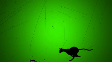 karikatury : Cat Chase Mouth in Retro Old Look Style on a Green Screen Background