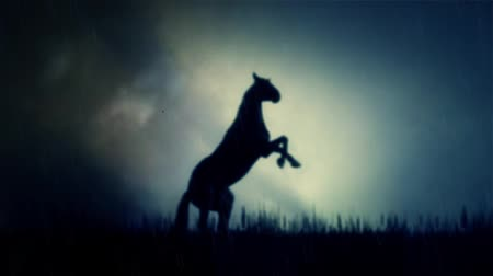 batı : An Epic Stallion Horse Standing on a Field Under a Lightning Storm Stok Video