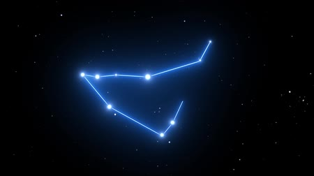astroloji : Capricorn Constellation on a Beautiful Starry Night Background