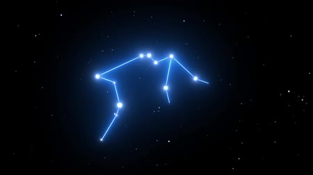предъявитель : Aquarius Constellation on a Beautiful Starry Night Background