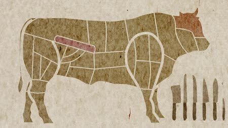 peças : Diagrams Of Cow Body Parts Anatomy for Cuisine Purposes