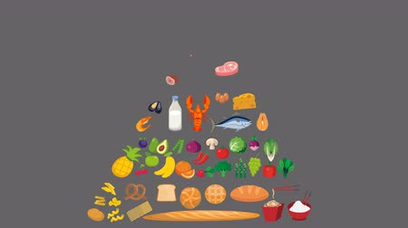 nutrição : Food pyramid Nutrition Animation in Alpha Channel