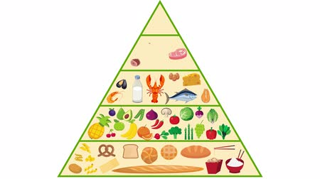 nutrição : Food pyramid nutrition Animation