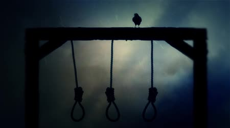 until : Nooses Hanging on a Gallow with a Raven in a Middle of a Storm Stock Footage