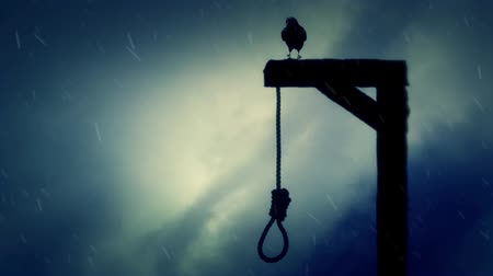 until : Raven Standing on a Gallows with a Swinging Noose in the Rain Stock Footage