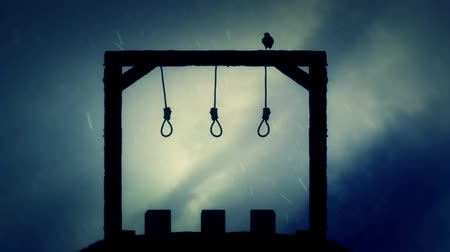 until : The Gallows Ready for an Execution with a Black Raven in the Rain Stock Footage