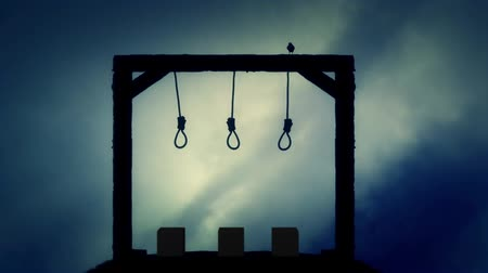 until : The Gallows Ready for an Execution with a Black Raven